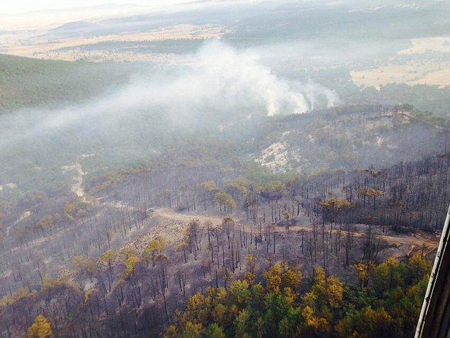 Yangın, karadan ve havadan müdahale sonucu bugün saat 08.00 sıralarında kontrol altına alındı. Sabahın saatlerinde helikopterlerle soğutma çalışması başlatıldı.
