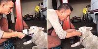 İnsan Dostunun Parayla Yapmaya Çalıştığı Komiklikleri 'Ben Bu Oyunu Bozarım' Diyerek Bozan Köpek