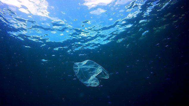 """""""Doğayı korumamız gerektiğini bir kez daha hatırlatıyor"""""""