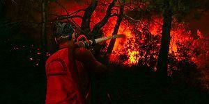 İzmir'deki Yangın 3. Gününde: 'Yerleşim Merkezlerinden Uzaklaştırıldı'