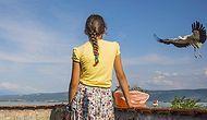 İçimizi Isıtan Haberlerde Bugün: 12 Yaşındaki Beyzanur Çakıl Her Gün 6 Leyleği Elleriyle Besliyor