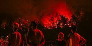Eğitimler Yeterli mi, Yanan Alanlar İmara Açılabilir mi? 5 Soruda Türkiye'de Orman Yangınları
