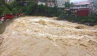 Artvin'de Sel: Dereler Taştı, Kamyonlar Sürüklendi, Yollar Kapandı