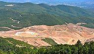 Ruhsatı Yenilenmedi: Alamos Gold, Kaz Dağları'ndaki Faaliyetlerini Askıya Aldı