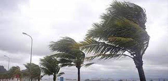 Fırtına : Kırlangıç Fırtınası
