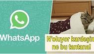 Herkes Bu Kadar Panik Yaptı Ama WhatsApp Son Görülme Özelliği Gerçekten Kaldırıldı mı?