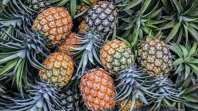 7. 18. yüzyılda ananas yüksek bir statü sembolü olarak görülüyordu bu nedenle insanlar ananas kiralayıp partilerde bunu sergiliyorlardı.