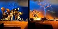 Suudi Arabistan'da Tiyatro Gösterisi Sırasında Oyunculara Bıçaklı Saldırı!