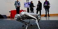 Ters Takla Atabilen Robot: Mini Çita