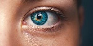 Acayip Bilgiler Kuşağı: Tekdüzelikten Daralmış Zihinlere İlaç Gibi Gelecek 15 Garip Gerçek