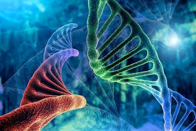 2. DNA aynı zamanda ne olarak bilinir?