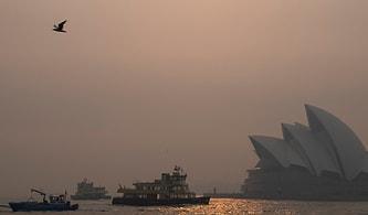 Avustralya'da Yaşanan Yangın Felaketi Nedeniyle Sydney'in Hava Kalitesi Tehlikeli Seviyenin 11 Katına Çıktı!