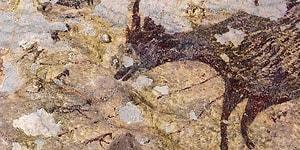 44 Bin Yıllık Sanat Eseri: Dünyanın En Eski Mağara Resmi Endonezya'da Bulundu