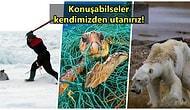İnsan Irkı Olarak Dünyayı Hayvanlar İçin Cehenneme Çevirdiğimizin Kanıtı Korkunç Olaylar