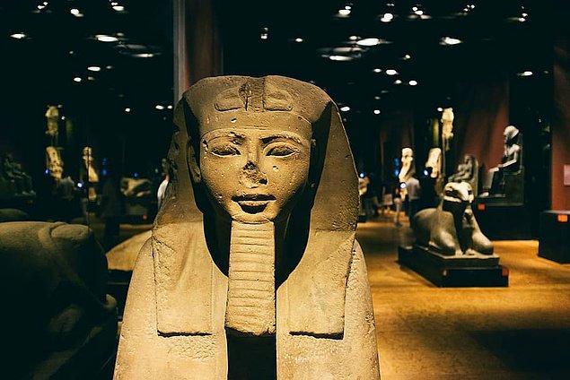 12. Tutankhamun'un DNA'sı sayesinde araştırmacılar geçmişteki beş jenerasyona kadar aile ağacını çıkarabildiler.