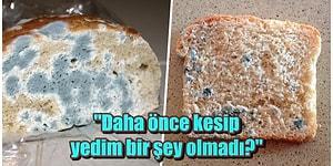 Herkesin Başka Bir Şey Söylediği Konuya Noktayı Koyuyoruz: Küflü Ekmek Yemek Zararlı mı?