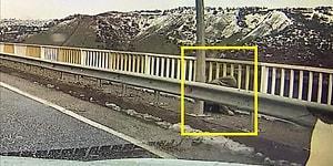 Arabanın Kamerasına Yansımıştı: Köprü Üzerindeki Kişinin Kayıp Gülistan Olduğu Belirlendi
