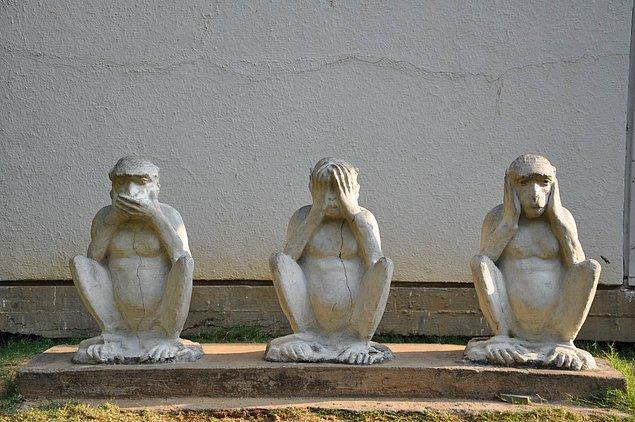 Japonların bu meşhur maymunlarla ilgili oldukça ilginç bir efsanesi bile var hatta. Benimsemek derken şaka yaptığımızı mı sandınız?