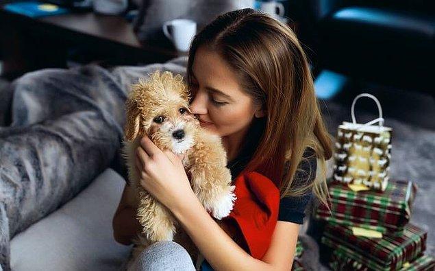 """11. """"Nişanlımı bir yavru köpek sahiplenmeye ikna etmek için ona bir pelüş köpek aldım. İşlerin pek beklediğim gibi gitmediğini ve telefonundaki onlarca fotoğrafına bakarak peluşla arasında özel bir bağ oluşturduğunu söyleyebilirim."""""""