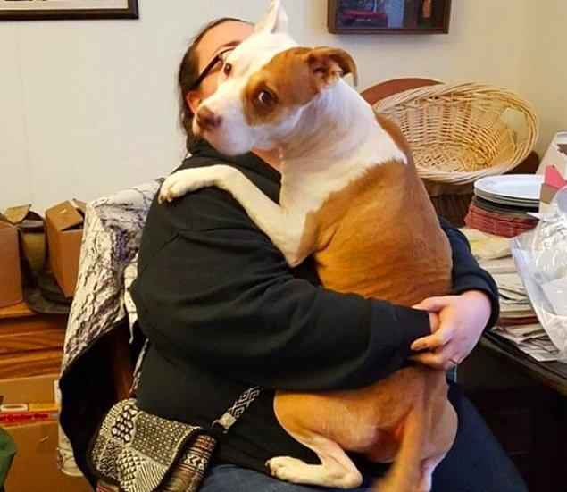 """5. """"Kız kardeşim birkaç hafta önce on yıllık erkek arkadaşını kaybetti. Bu fotoğraf da genelde çok korkunç olduğu düşünülen pitbull cinsi köpeğimin onu teselli ettiği sırada çekildi."""""""