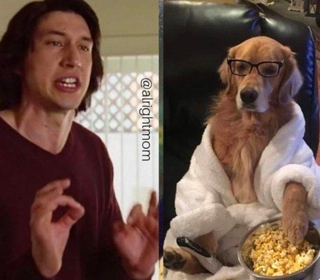 """3. """"Köpeğime neden koltukları yırtmaması gerektiğini anlatmaya çalışıyorumdur:"""""""