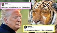Denizaşırı Mizahta Bu Hafta: Son Günlerde Yabancıları Kahkahaya Boğmuş 15 Komik Tweet
