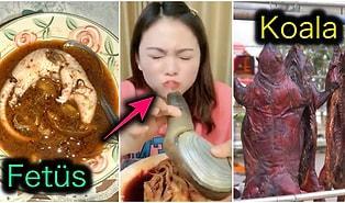 Bir Saniye Bile Görmeye Tahammül Edemeyeceğiniz Çin Mutfağının En Mide Bulandırıcı Yiyecekleri