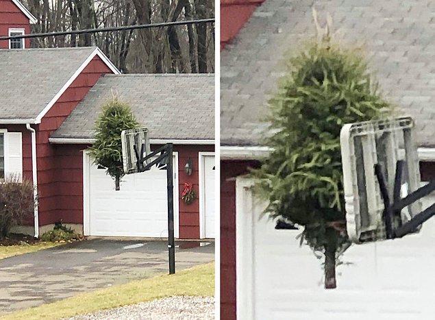 """8. """"Komşum, diğer komşumun evine gitti, BUNU yaptı ve oradan ayrıldı."""""""
