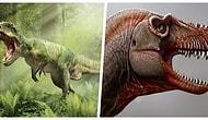 Nesli Tükendikten 79 Milyon Yıl Sonra Varlığını Keşfettiğimiz T. Rex'in Yaşlı Kuzeni 'Thanatos'