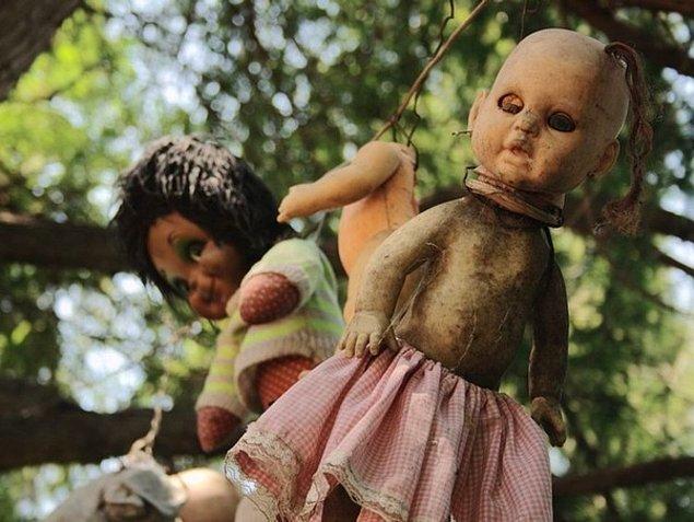 13. Meksika'daki Xochimilco Kanalı'nın yanında bulunan 'Bebekler Adası'