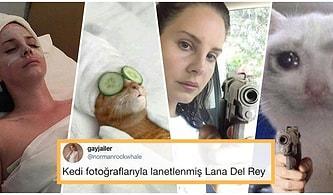 Lana Del Rey'den Daha Lana Del Rey Olan Kedilerin Muhteşem Benzerlikleri Size Kocaman Bir Kahkaha Attıracak!