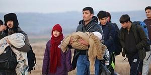 Sınırdan Manzaralar: Kontrolün Kaldırılmasının Ardından Mülteciler Edirne'ye Doğru Yürümeye Başladı