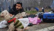 Sınırda Bekleyen Filistinli Mülteci Ahmed'in Kedi ve Köpeğine Hayvanseverler Sahip Çıktı