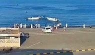 Birleşik Arap Emirlikleri'nde Balıkların Saldırısı Sonucu 2 Kişi Hayatını Kaybetti!