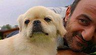 Survivor'da Herkes Üzgün: Köpeği Ölen Ersin Korkut'a Kötü Haberi Kimse Veremedi