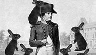 Bunlar Gerçekten Yaşandı! 1. Bölüm: Napolyon ve Tavşanlar
