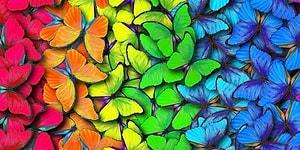 8 Soruda Auranın Ne Renk Olduğunu Söylüyoruz!