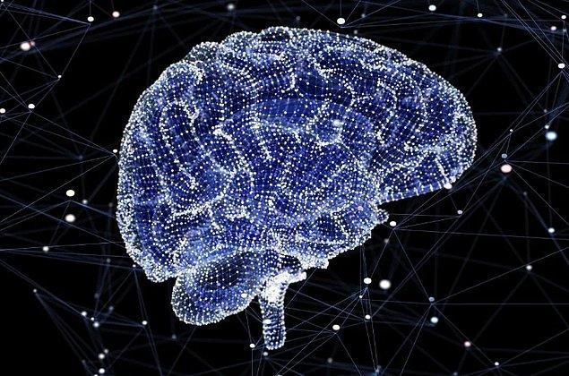 14. İnsanlar beyinlerinin sadece %10'unu kullanmazlar.
