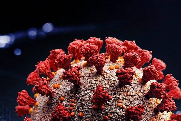 """""""4 - Covid-19 virüs spesifik T-lenfositler: Virüsle savaşacak T-lenfositler hazırlıyoruz"""""""