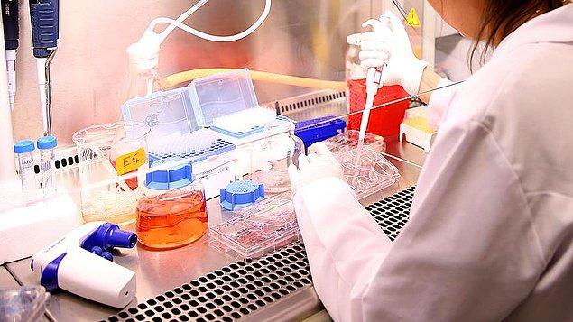 """""""2 - Kök hücre çalışması: 7 hasta üzerinde araştırma yapıldı"""""""