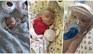 Doğumundan Hemen Sonra Kalp ve Akciğer Ameliyatları Geçiren ve Şimdi de Kovid-19'u Atlatan 6 Aylık Bebek