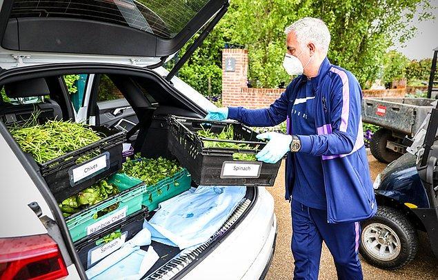 6. Tottenham Teknik Direktörü Jose Mourinho, kulüp bahçesinde yetiştirilen sebze ve meyvelerin stadyum içerisinde yer alan yardım merkezine taşınmasına destek verdi.
