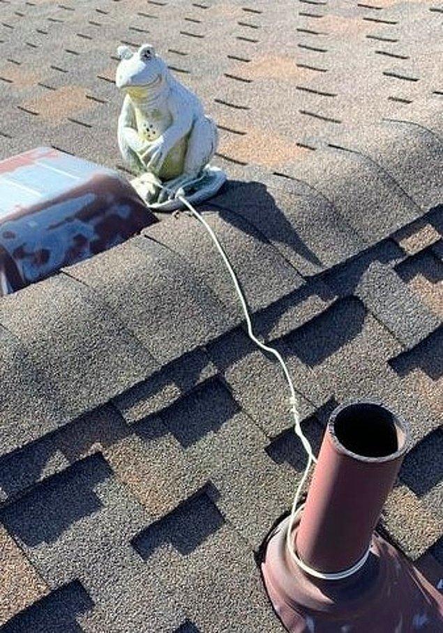"""7. """"Yeni aldığımız evin çatısına bağlanmış bir kurbağa heykeli bulduk."""""""
