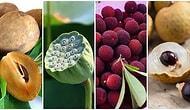 Görünce Dişlerinizin Kamaşmasına Neden Olacak Asya'da Yetişen Birbirinden İlginç Formlara ve Tatlara Sahip 20 Meyve