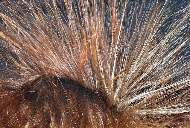 2. Saçlarınız elektriklenmeye ya da cildiniz karıncalanmaya başlarsa, yıldırım düşmesi neredeyse kaçınılmazdır.