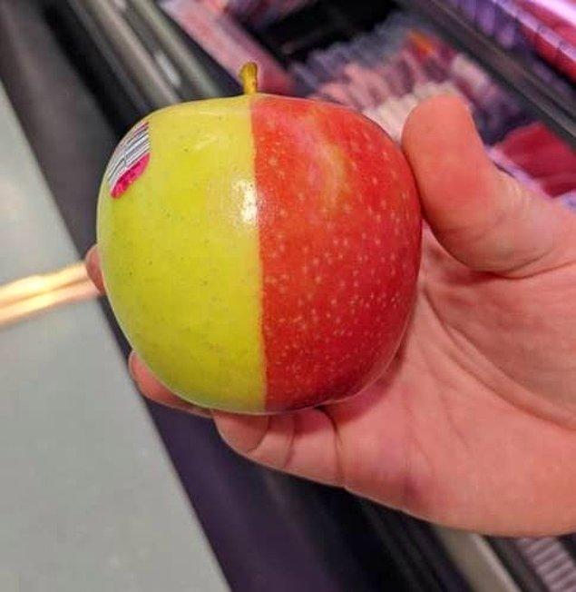 1. Ortadan simetrik bir şekilde ayrılan elma: