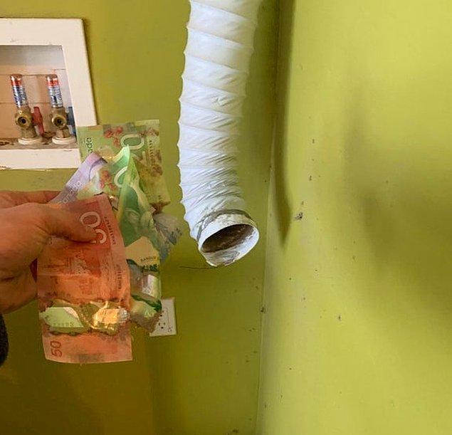 """1. """"Yeni evimizdeki kurutucuyu çekince havalandırmanın içinde 105 dolar buldum."""""""