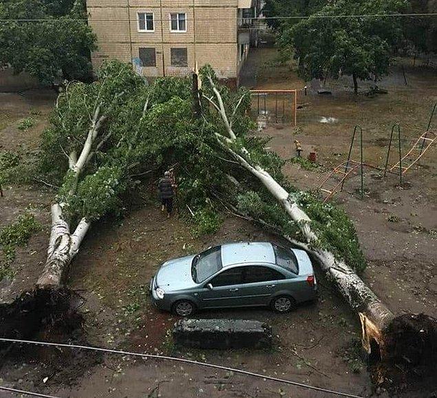 """9. """"Ukrayna'da yağmurun ardından şanslı bir araba."""""""