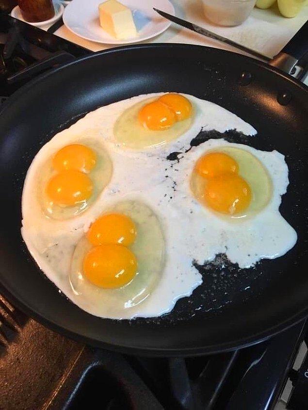 """13. """"Ya çok şanslıyım ya da bu yumurtalar doğal değil."""""""