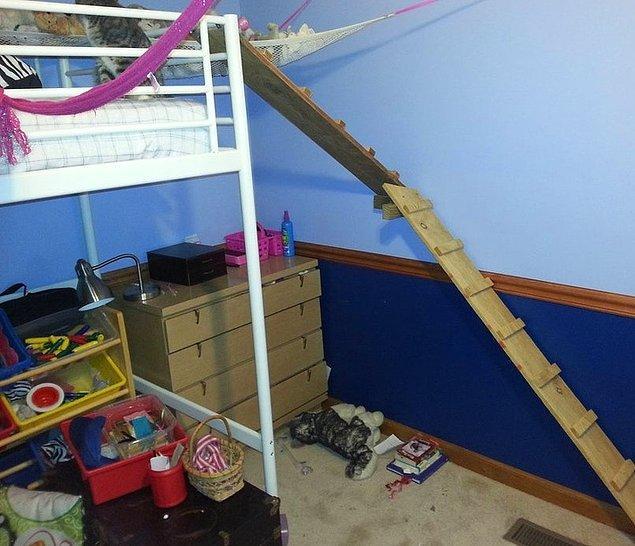 """12. """"Kızım engelli kedisi yanına çıkamayacağı için yerde uyuyordu. Ben de yatağını kedisinin tırmanabileceği hale getirdim."""""""